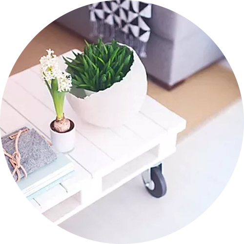 Photo of office decor and plants